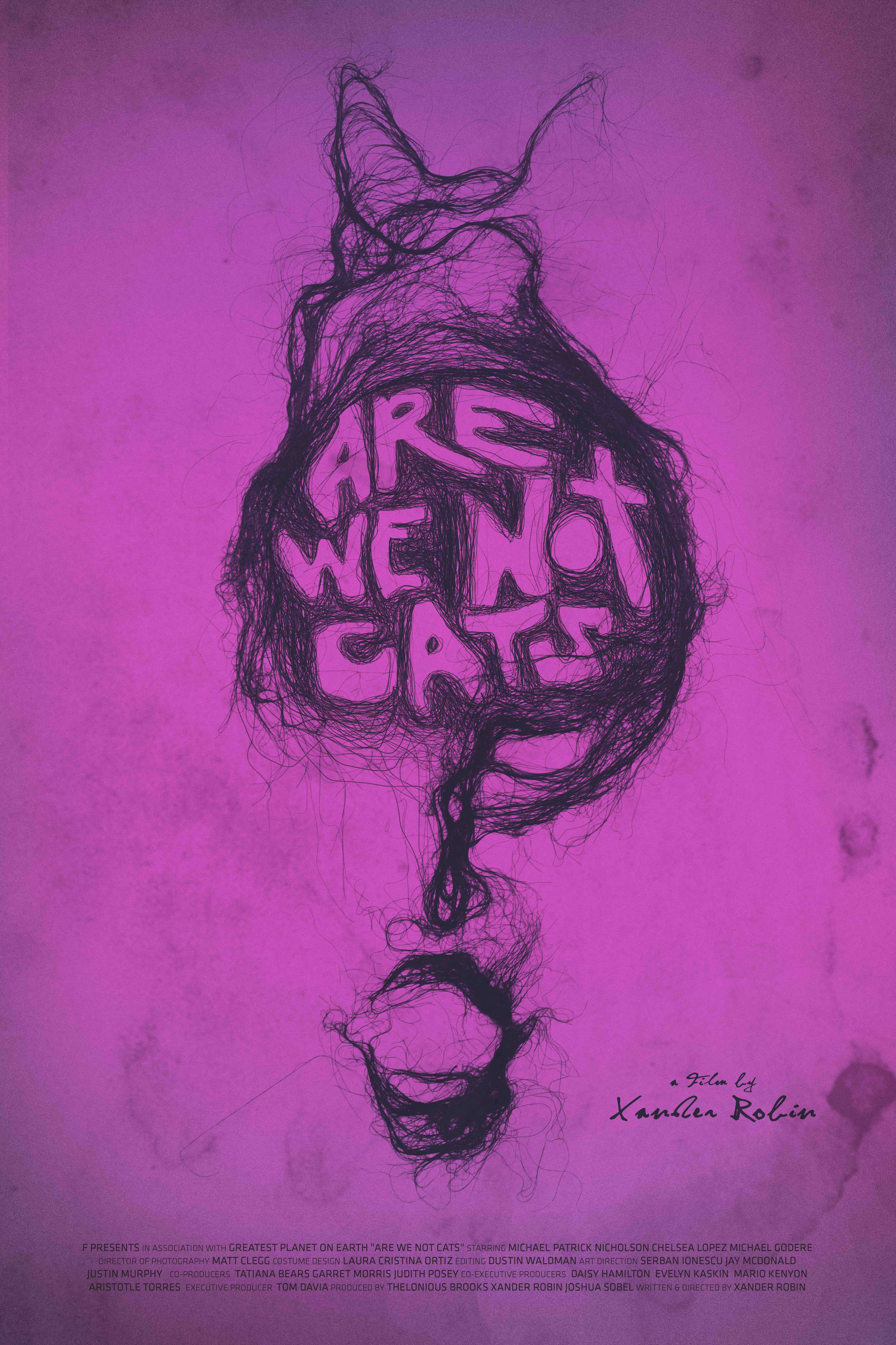 We Are Not Cats
